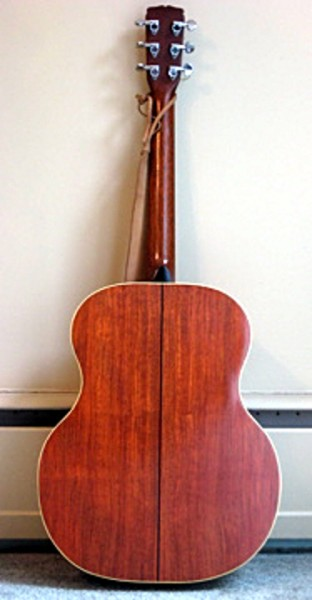 Novotny guitar back